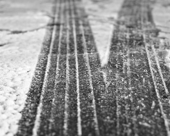 Snow Tracks #1