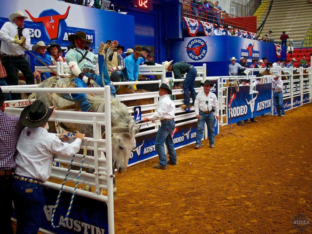 Bucking Bronco 1, Rodeo Austin - Austin, Texas