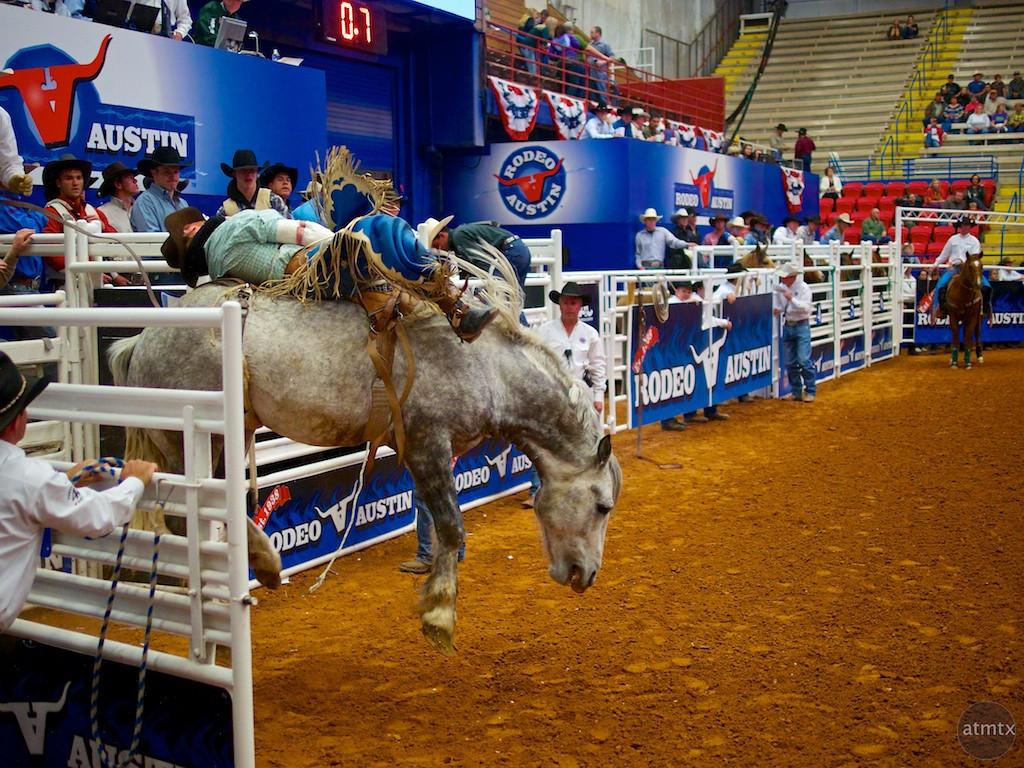 Bucking Bronco 5, Rodeo Austin - Austin, Texas