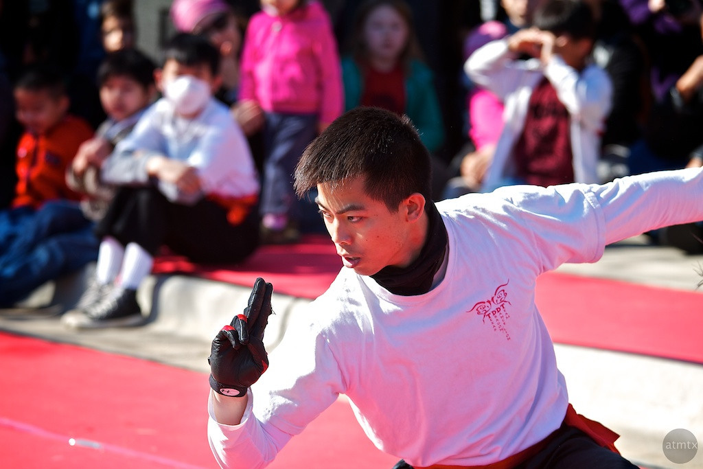 More Martial Arts, 2012 Chinese New Year Celebration