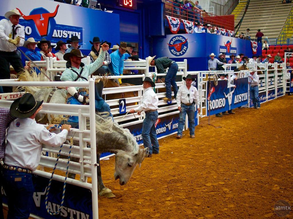 Bucking Bronco 2, Rodeo Austin - Austin, Texas