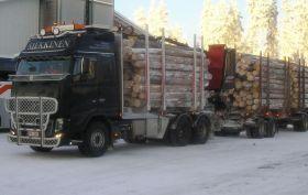 Dead Wood Deliverables
