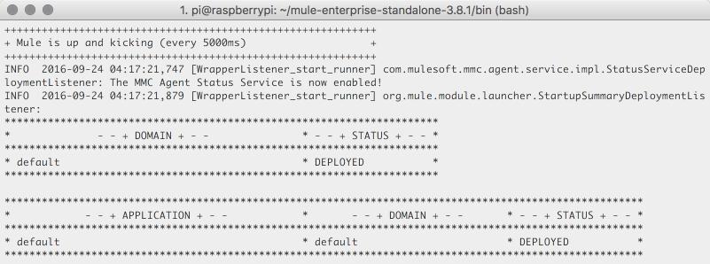 Mule running on the Raspberry Pi