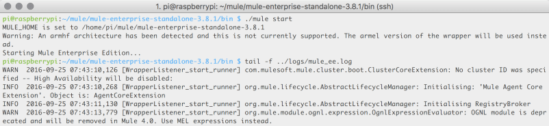 Starting up Mule and looking at the server logs