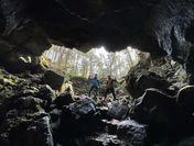樹海の洞窟