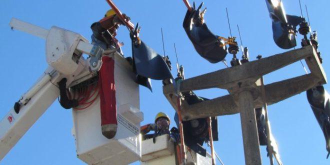 Se conocieron ofertas para construir obras eléctricas en barrio Pompeya