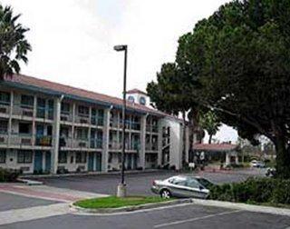 Los 10 Mejores Hoteles Que Aceptan Mascotas En Ventura