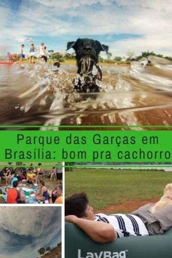 Parque das Garças: Bom pra Cachorro
