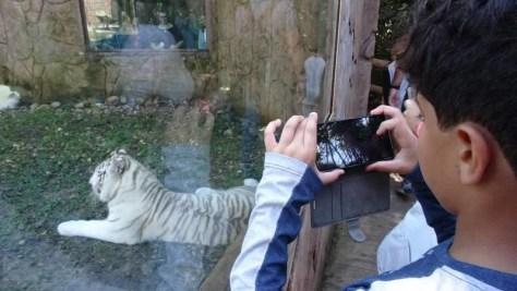 Zoológico do Beto Carrero