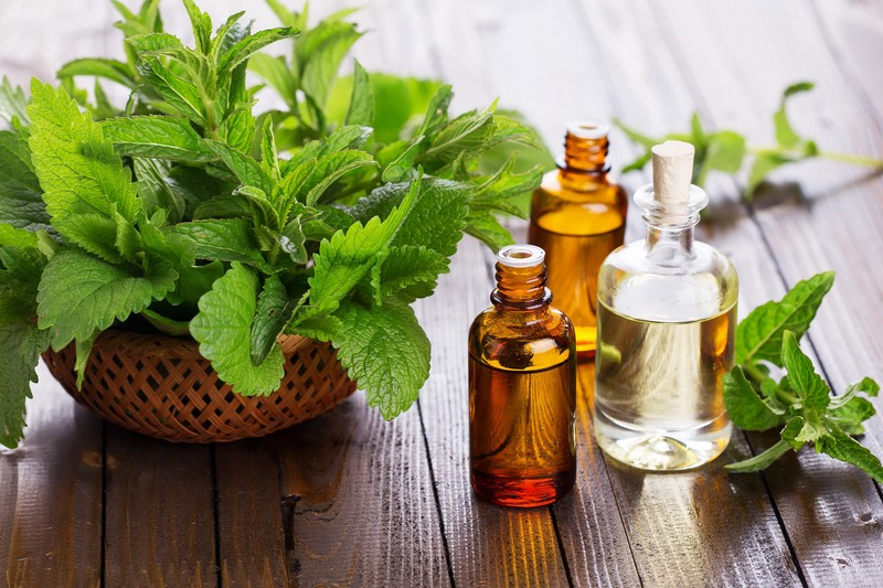 manfaat-peppermint-oil