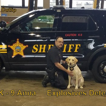 K9 Anna Explosive Detection Dog