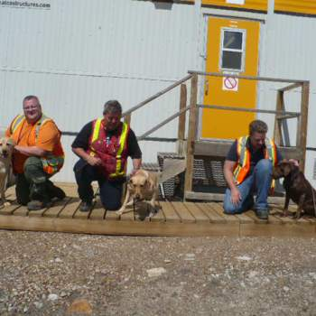 Drug Detection Dogs of Northern Alberta