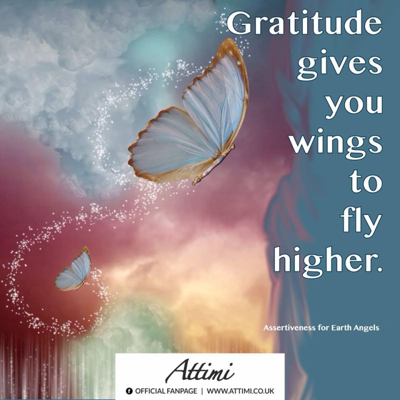 Gratitude gives you wings to fly higher.