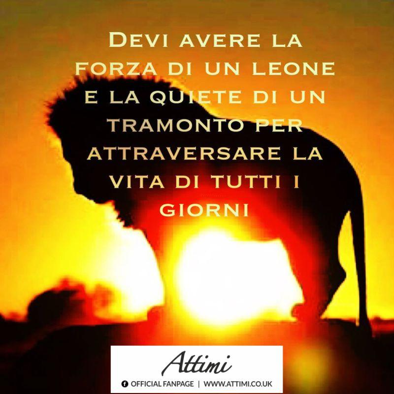 Devi avere la forza di un leone e la quiete di un tramonto per attraversare la vita di tutti i giorni.