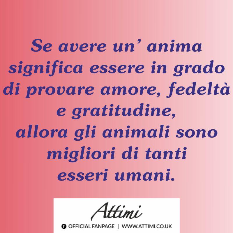 Se avere un'anima significa essere in grado di provare amore, fedeltà e gratitudine, allora gli animali sono migliori di tanti esseri umani.