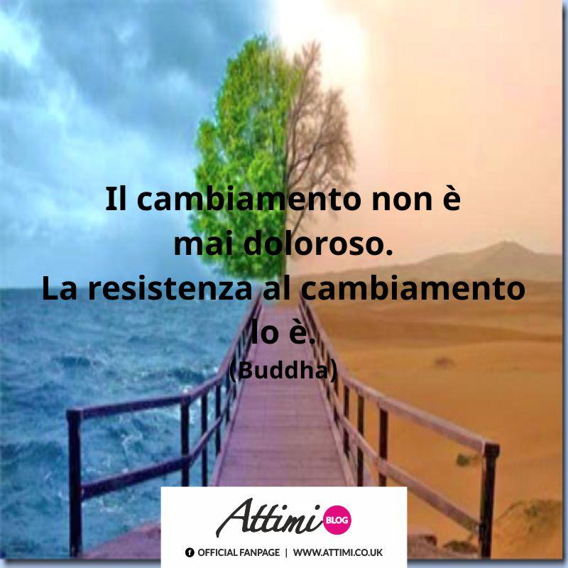 Il cambiamento non è mai doloroso. La resistenza al cambiamento lo è. (Buddha)