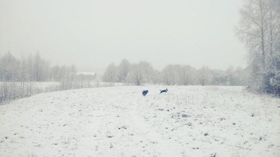 15-apr-15-bielorussia1