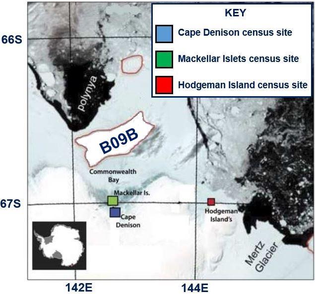 150000-pinguins de fome-a-morte-a-mega-enorme-icebergs