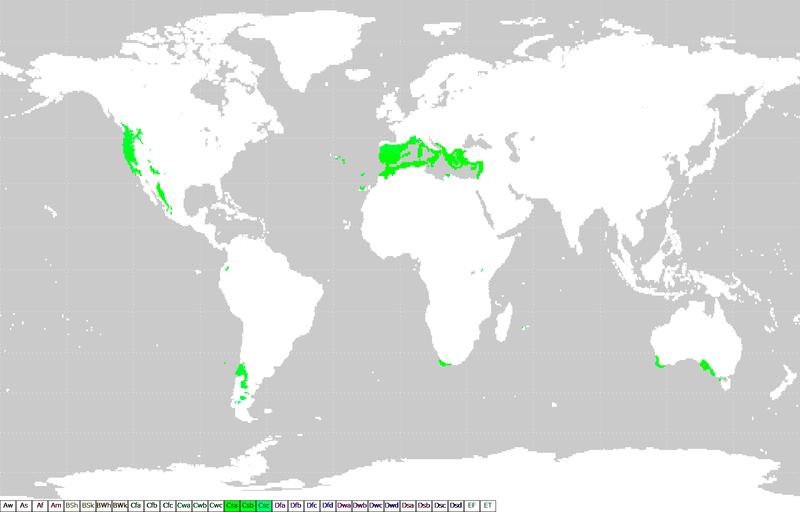 mappa_clima_mediterraneo