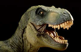 T-Rex with open mouth Otto Sorts
