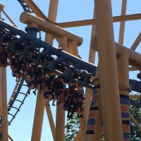 3-For-2 Entry At Flamingo Land Resort