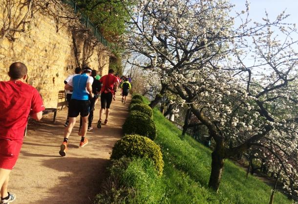 Lyon_Urban_Trail_2016-15