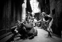 varanasi news,varanasi ghat,street of banaras,banaras ki gali,banarasi movie