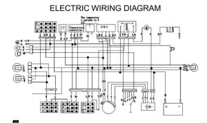 Wiring problems  ATV Forum  All Terrain Vehicle discussion for Honda, Yamaha and more ATVs