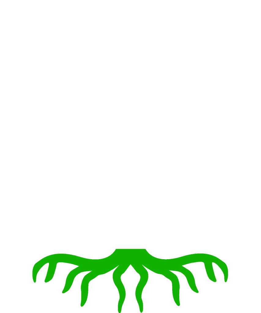 The Atypical Finance Tree