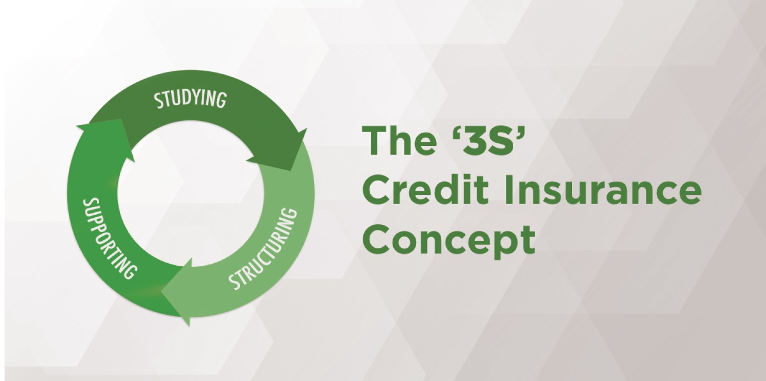 The '3S' credit insurance concept