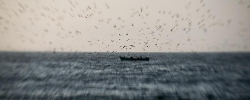 Réserve naturelle de Paracas (Pérou) - un pêcheur entourés d'oiseaux