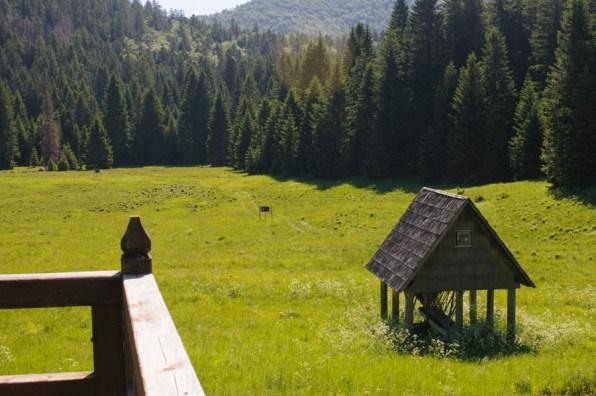 Parc national de Risnjak en Croatie