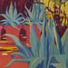 14-cactus-75x75