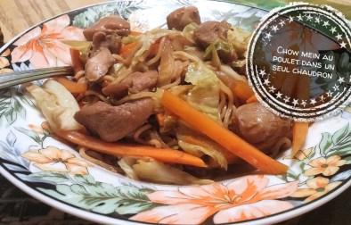 Chow mein au poulet dans un seul chaudron - Auboutdelalangue.com