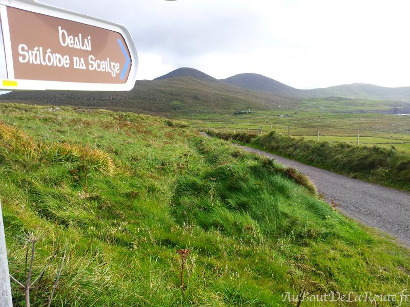 Zone gaelique sur le Skellig Ring