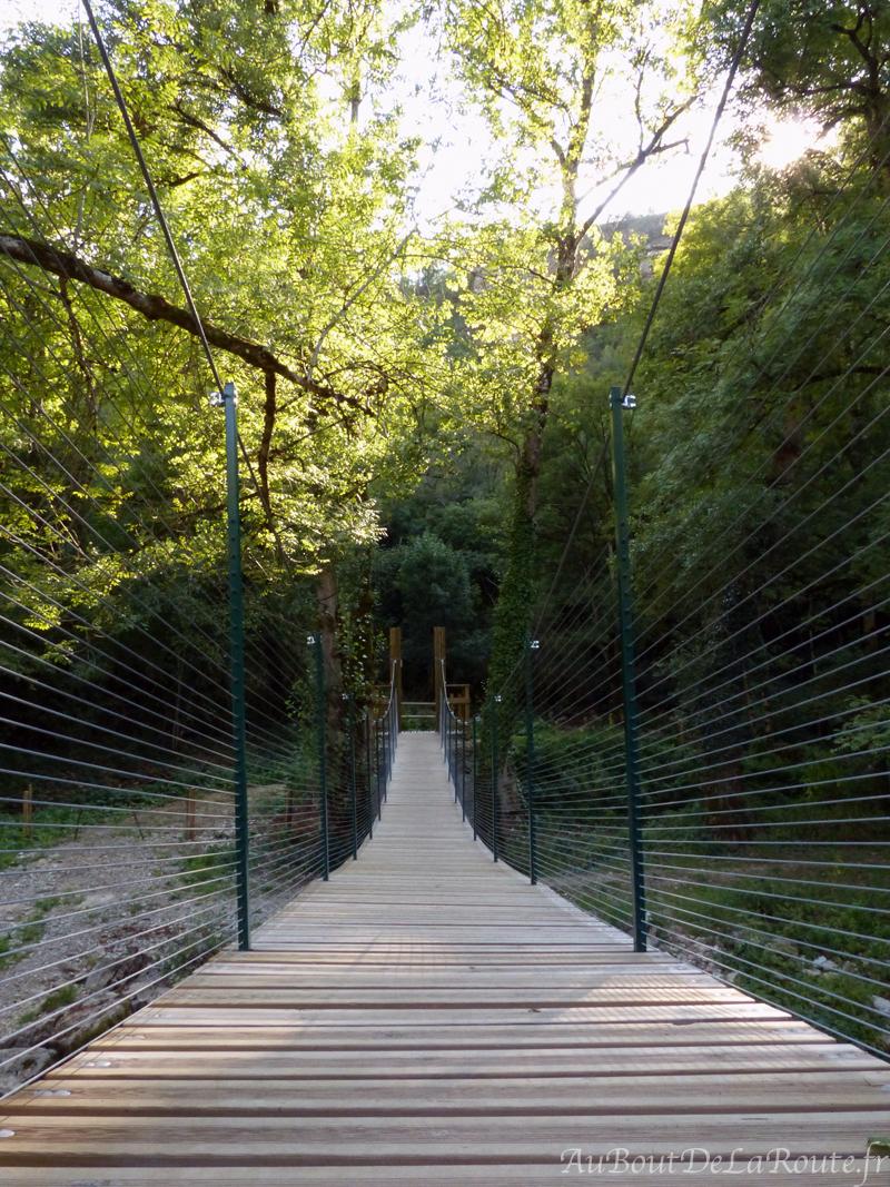 Pont de singe
