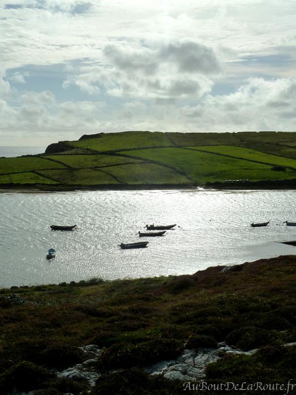Iles de la Baie de Clifden