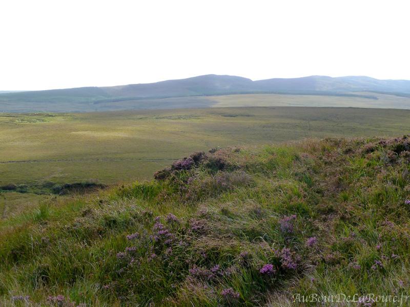 Plaine du Connemara