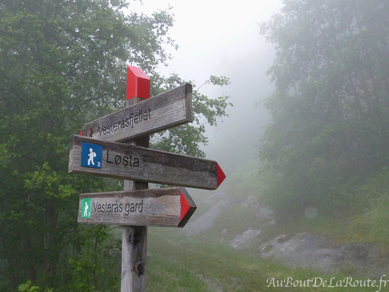 Losta Hike