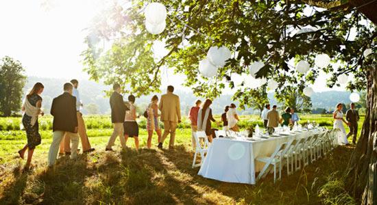 Design your affordable wedding