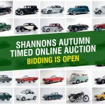 Shannons Autumn Timed Online Auction