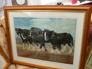 Shire horses picture