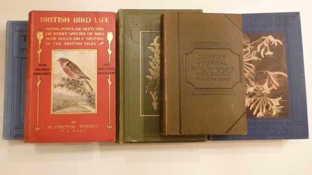 "Two Antique Bird Books, Two Antique Wild Flower books and ""Darwins Journal of a voyage around the world"" - 1890 edition"