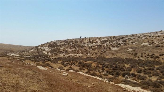 Das Naturschutzgebiet in der Nähe des Flusses Makuh. Foto Moshe Eyal/TPS
