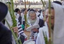 Sukkot in Jerusalem am 15. Oktober 2019. Foto Hillel Maeir/TPS