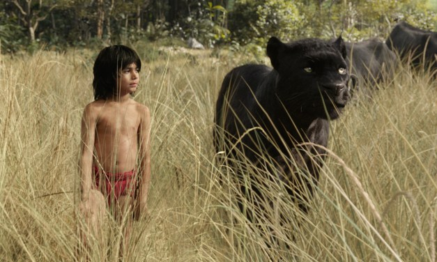 What We're Watching: Music & The Jungle