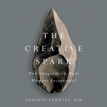 The Creative Spark