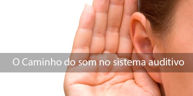 3 coisas que você precisa saber sobre o caminho do som no sistema auditivo 1