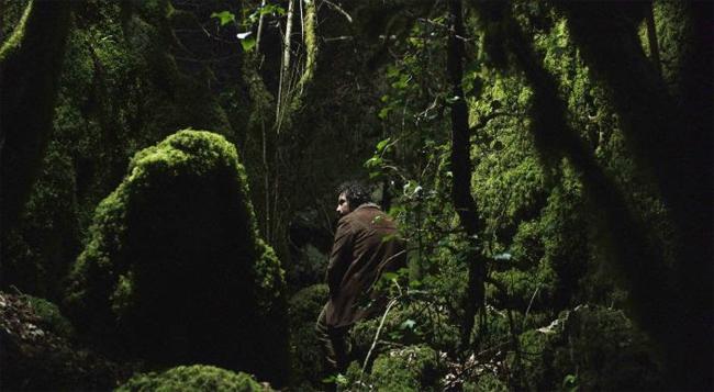 Image result for longa noite cine