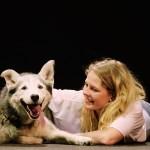 Especial 'Pasión perruna' – estreno 21 de agosto en Odisea